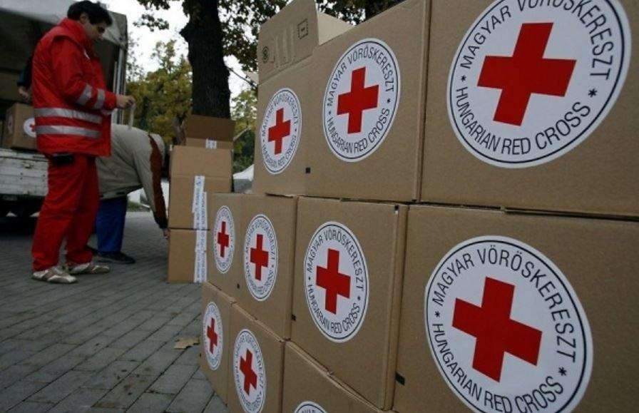 Украинские заложники из Макеевской колонии получили наконец передачи от родственников через Красный Крест - Геращенко