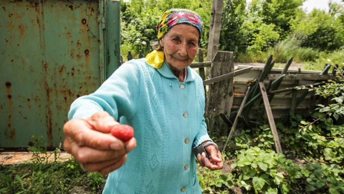 восток Украины, Донбасс, армия, ООС, ВСУ, боевики, потери, опытное,