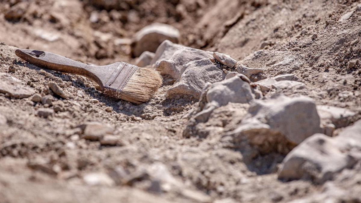 """Недалеко от Анталии археологи впервые нашли древний алтарь с загадочной надписью """"змеиного"""" содержания"""