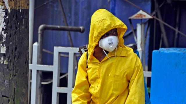 ВОЗ: в мире недооценивают масштабы вируса Эбола