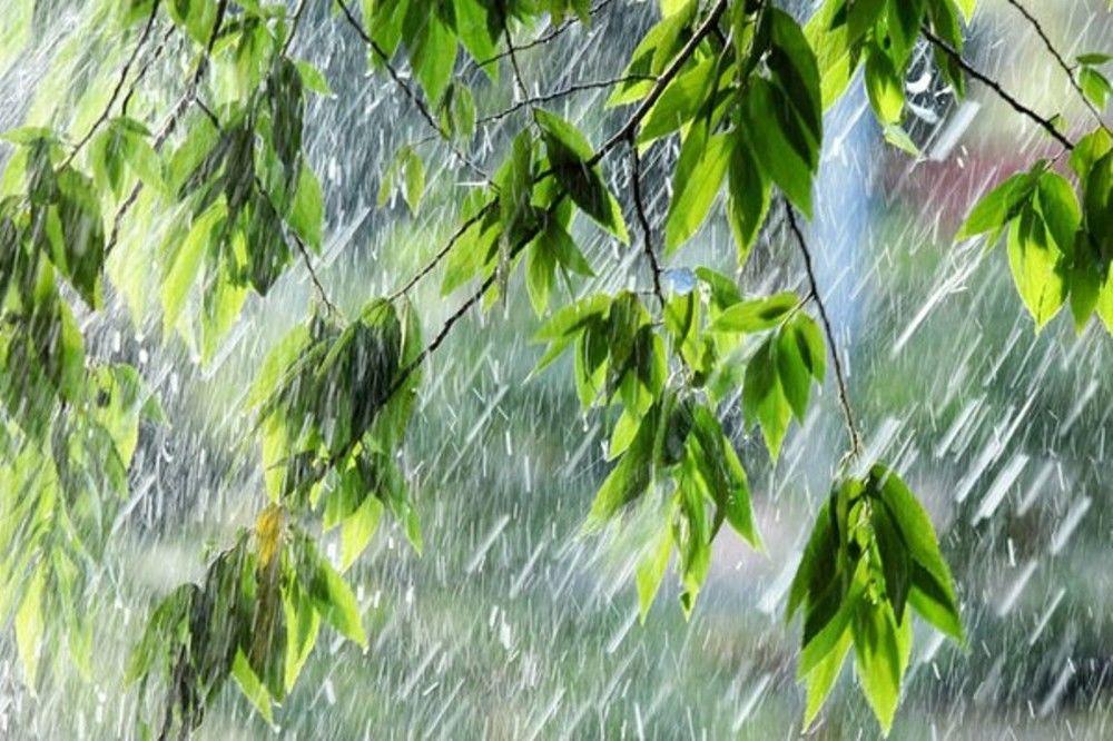Регионы Украины будет сильно заливать: на города движется циклон дождей и гроз