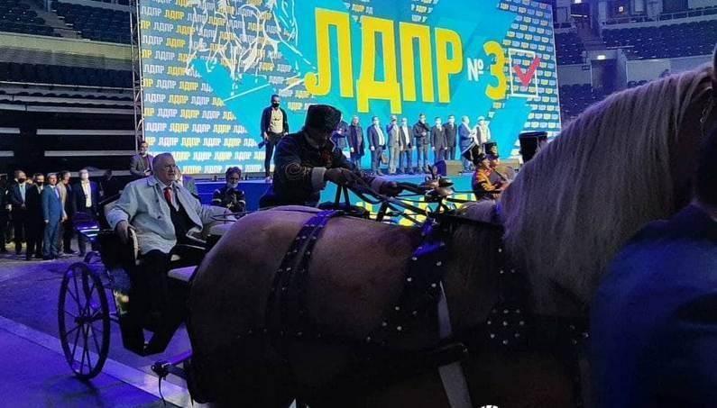 Лошади отказались везти Жириновского – лидер ЛДПР начал кричать и махать руками на съезде