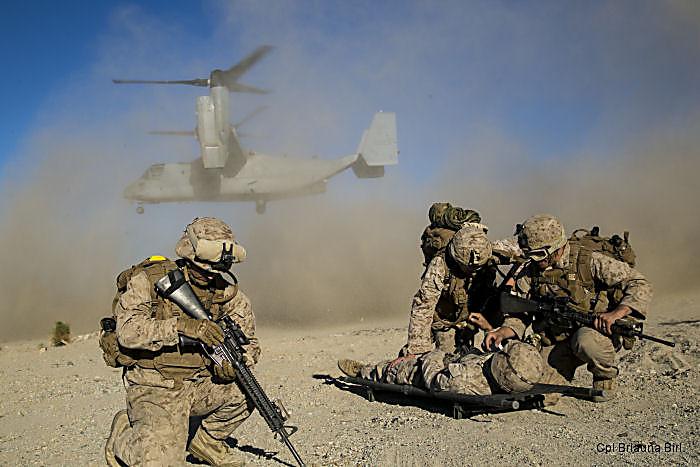 Пентагон сообщил, что территория Ирака почти полностью освобождена от террористов ИГИЛ