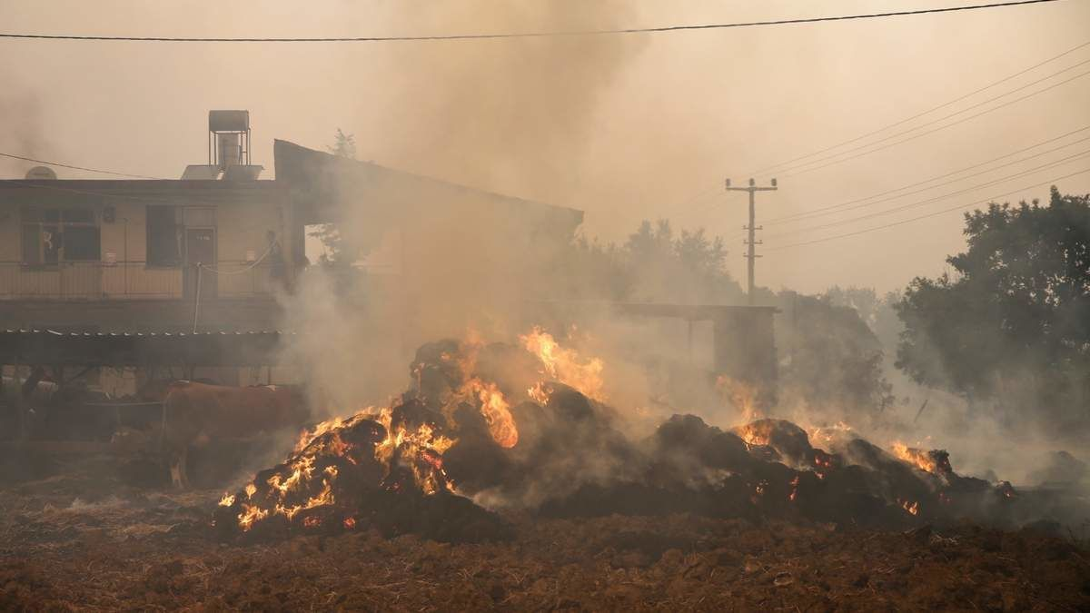 Лесные пожары в Турции добрались до популярных курортов: есть погибшие, эвакуировано 18 поселений