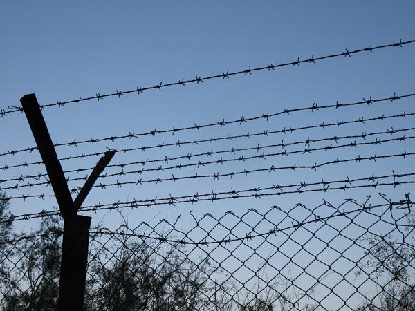 США приобретет колючую проволоку для границы Украины и Крыма
