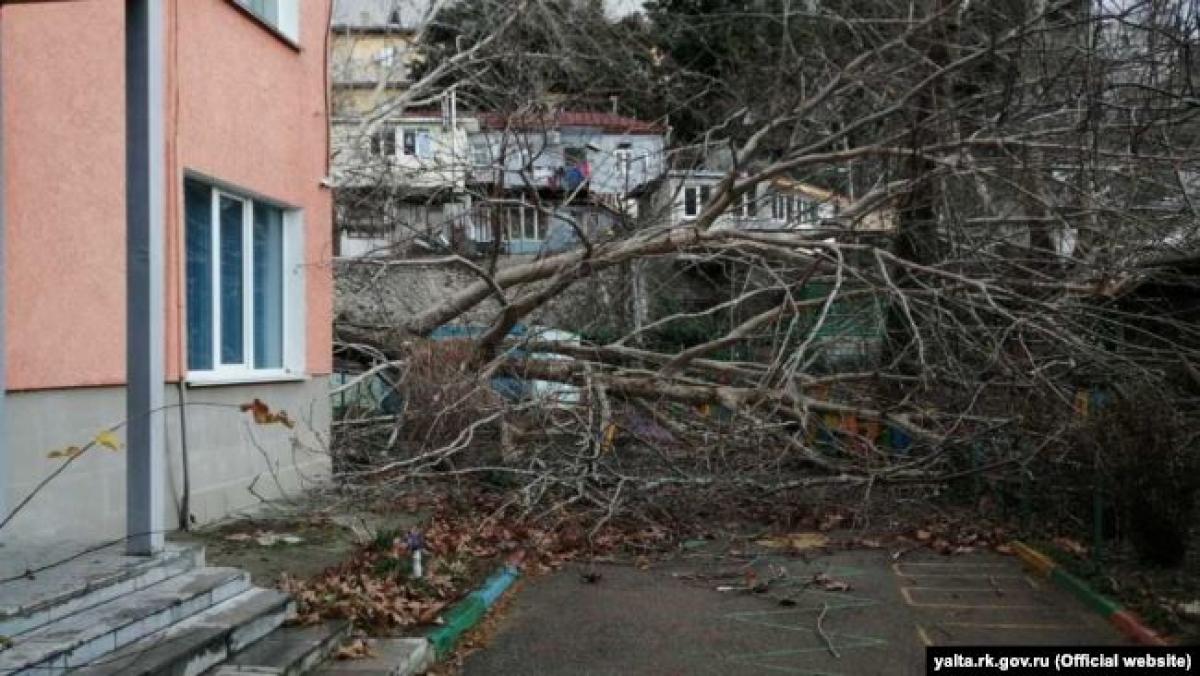 погода, крым, аннексия, ялта, происшествия, стихия, ураган, новости украины