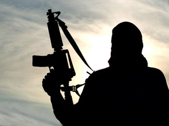 Чеченского террориста со взрывоопасной фамилией, воевавшего на стороне ИГИЛ, задержали правоохранители Италии