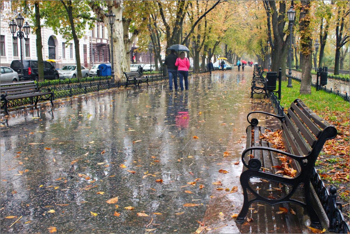 Сильные ветра и проливные дожди: в каких областях Украины погода окончательно испортится