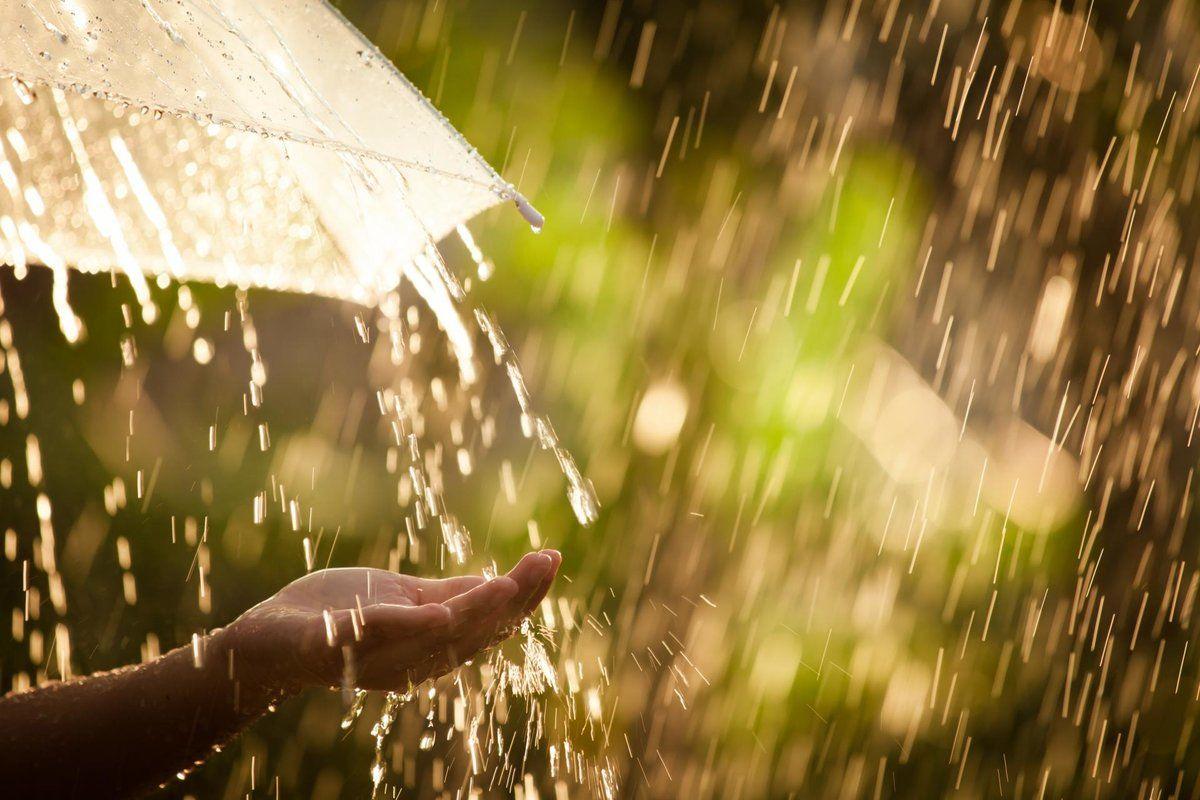 1 июня – первый день лета: синоптик рассказала, почему погода будет далеко не теплой