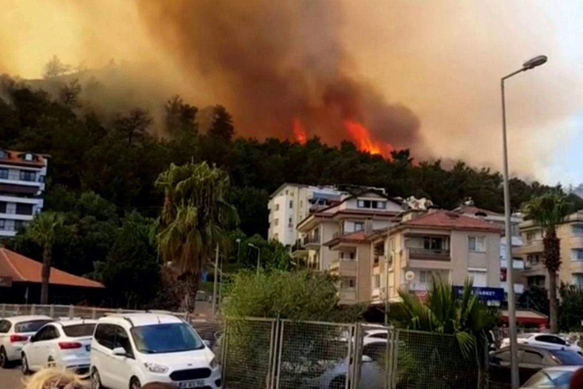 Украина готовит авиацию для помощи охваченной пожарами Турции - Зеленский