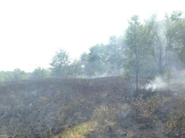 Неизвестные пытались сжечь Запорожскую Сечь на острове Хортице: опубликованы кадры последствия пожара