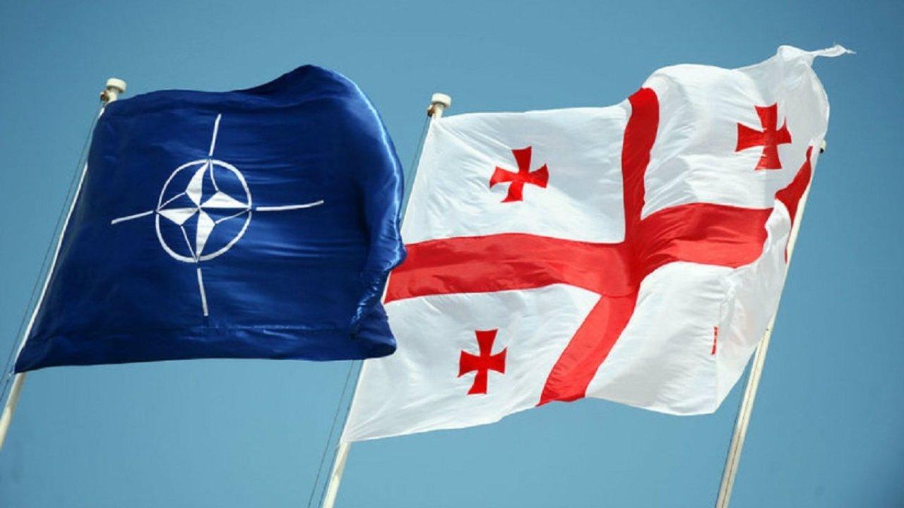 СМИ узнали, что Грузии могут дать ПДЧ в НАТО без Украины