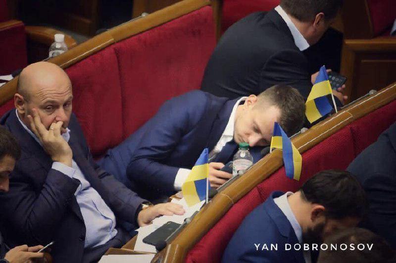 беленюк, устенко, парламент, сон, скандал, сн, слуга народа