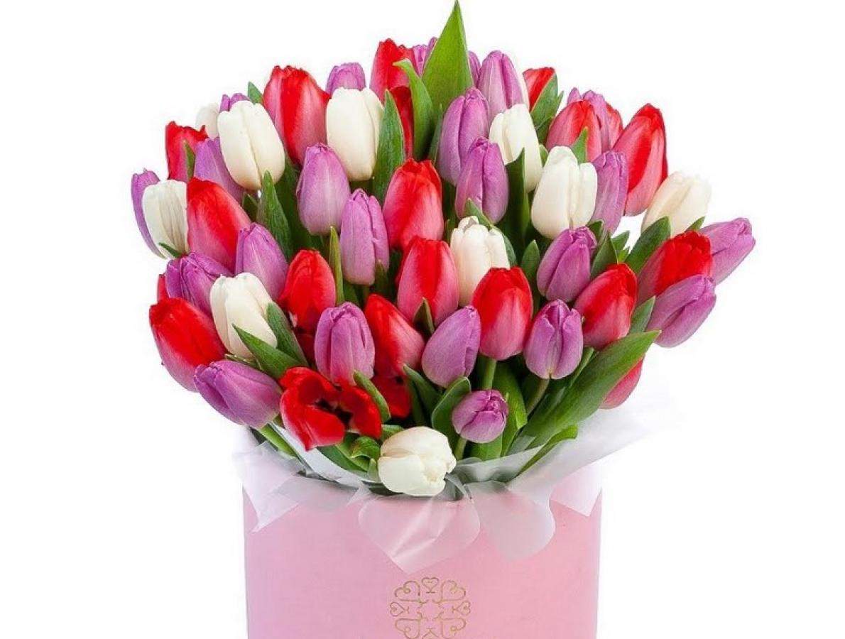 Дарите тюльпаны любимым женщинам