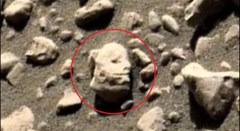 Нибиру захватила Марс: оторванная голова пришельца поставила ученых в тупик – сенсационное фото