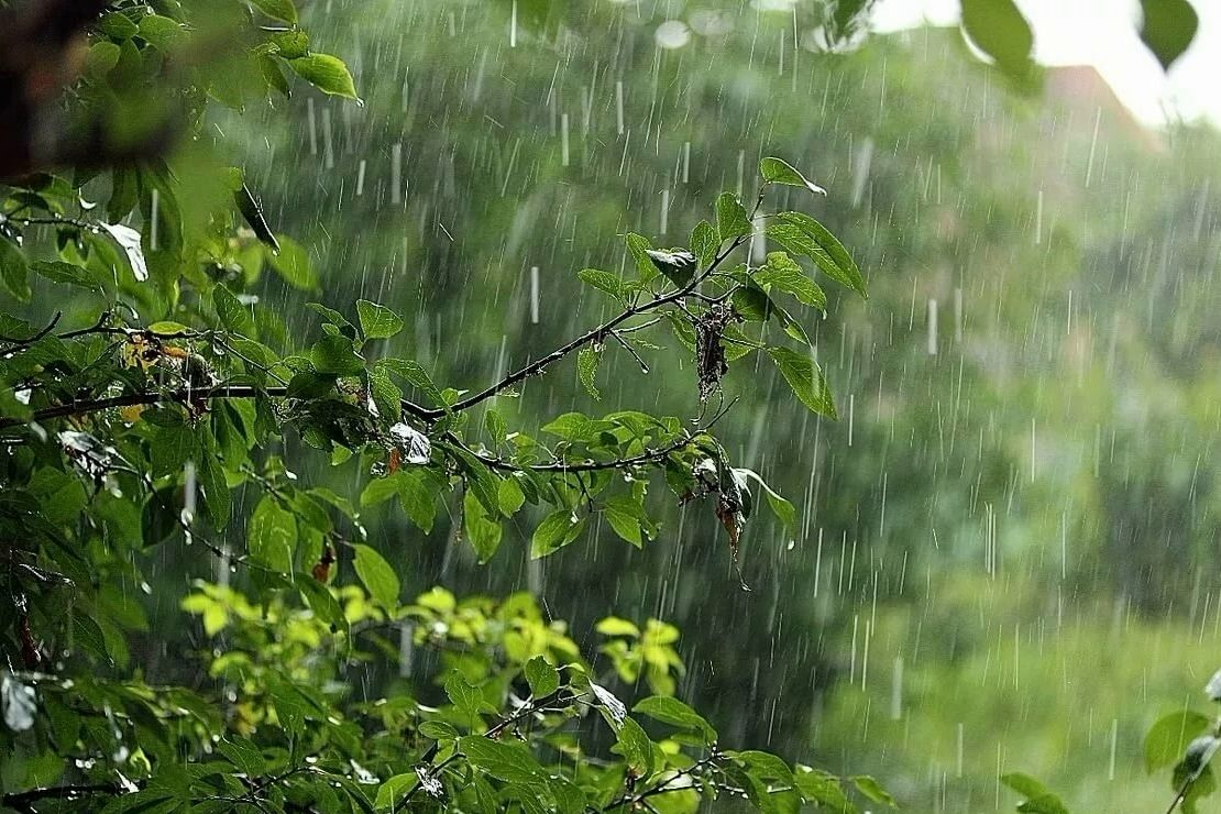 """Дожди с грозами обрушатся на Украину: синоптик назвала области, которые попадут в """"сухую полосу"""" 20 мая"""