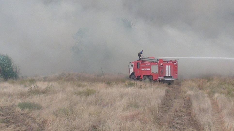 На Ростовщине российские пожарники 2-й день никак не могут погасить лесной пожар: площадь ликвидации огня расширилась к 3,3 тысячи гектарам
