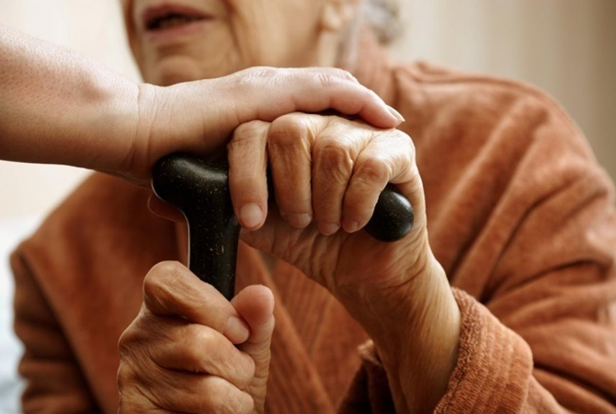 """92-летняя жительница Мукачево сбежала с самоизоляции ради наряда на Пасху: бабушка провела целую """"спецоперацию"""""""