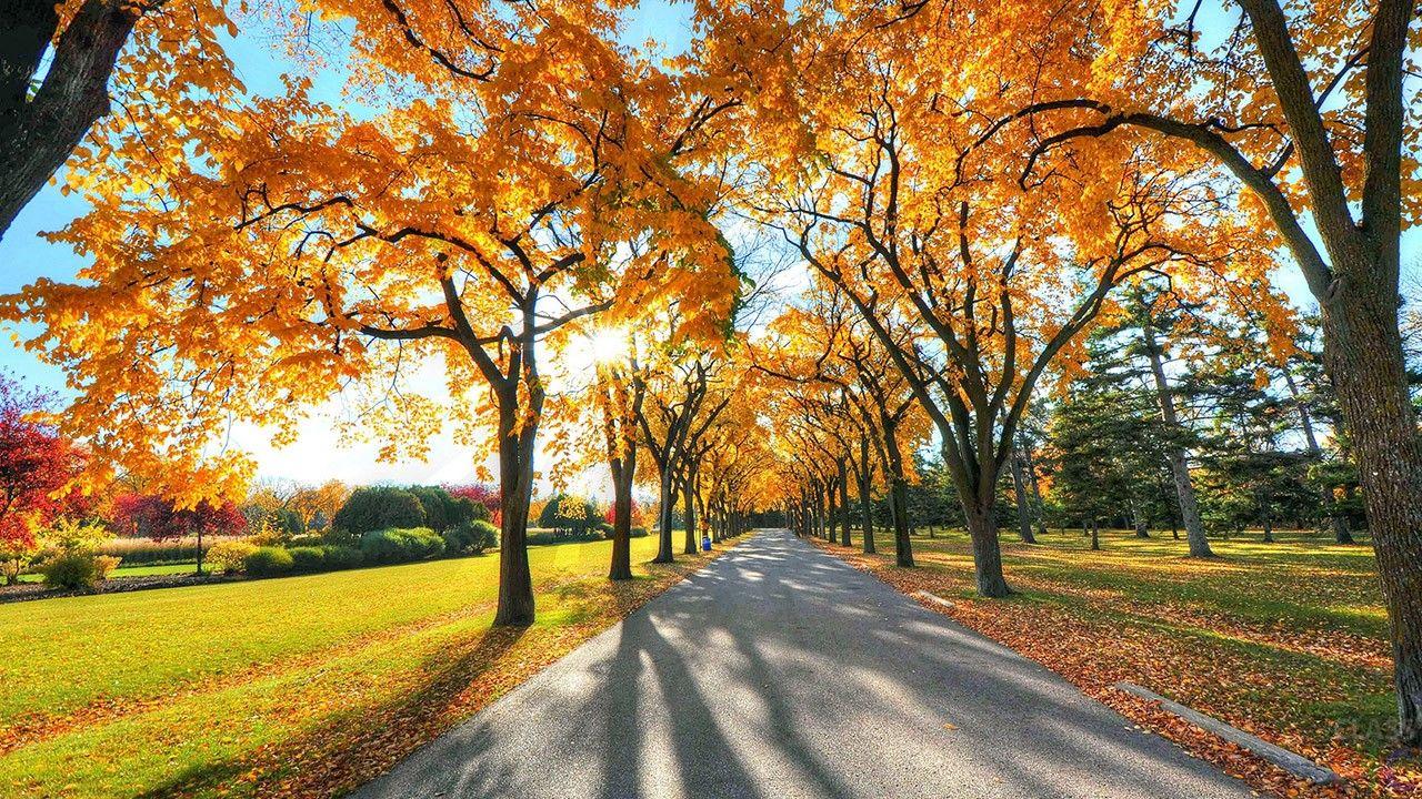 Какой праздник отмечают 7 октября: почему на Феклу Заревницу не стоит ходить в гости