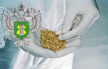Россия намерена запретить ввоз растительной продукции из Украины