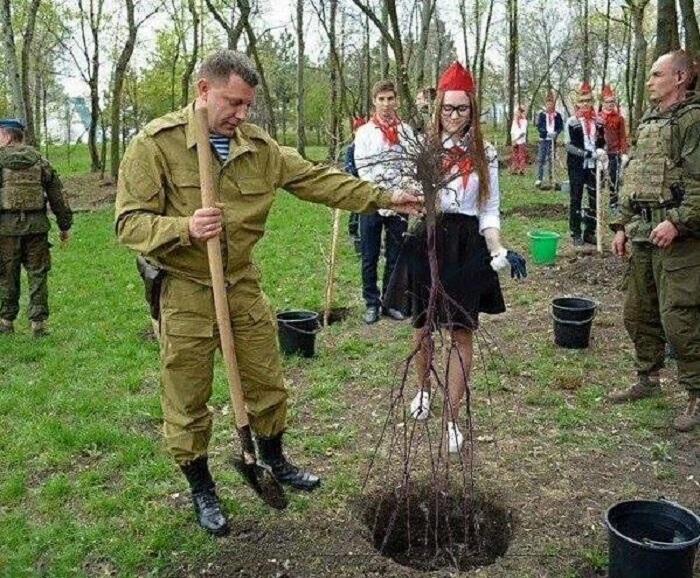"""Конфуз главаря """"ДНР"""": соцсети высмеяли глупое фото террориста Захарченко, где он сажает дерево корнями вверх"""