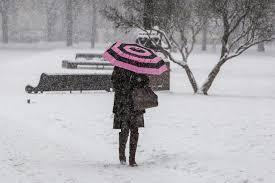 Сильные снегопады, гололед и суровые морозы: жителей 15 областей Украины ждут погодные коллапсы - прогноз