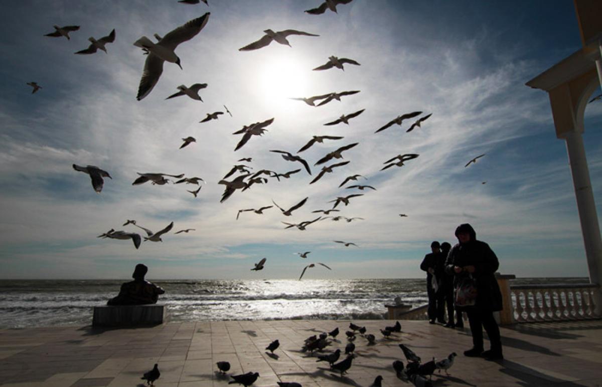 Эпидемия коронавируса в Крыму может достигнуть масштабов Италии - детали