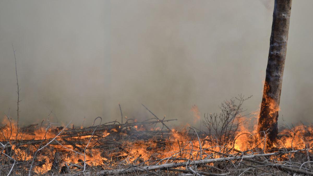 Пожар и взрывы на позициях ВСУ под Горловкой: у Украины крупные потери, кадры последствий ЧП