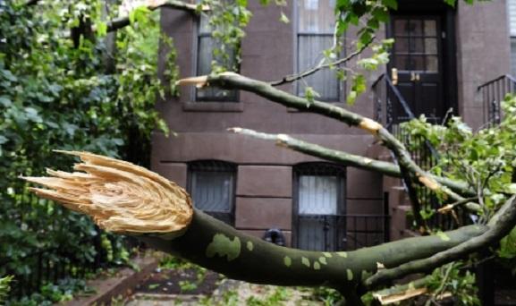 Четыре погибших человека, сотни поваленных деревьев и разрушенные дома: спасатели рассказали о масштабах  шторма, пронесшегося по Украине - кадры