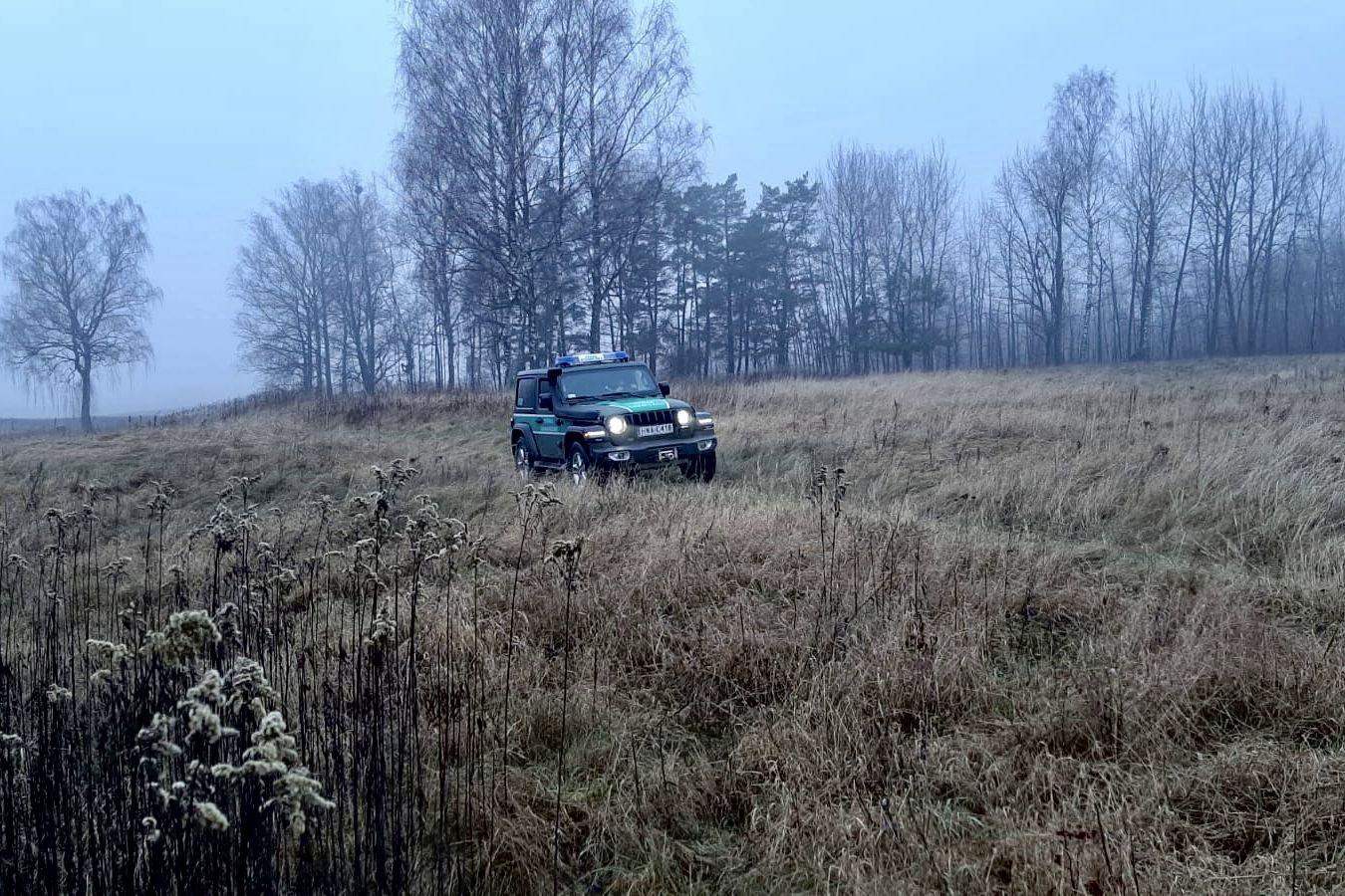 Новый рекорд Лукашенко по нелегалам: в Польшу попытались проникнуть более 300 мигрантов