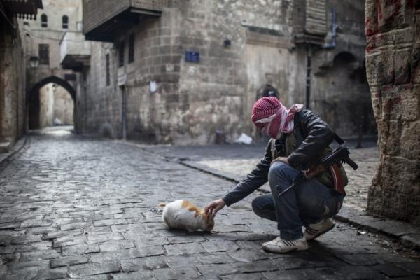 В ООН возобновили переговоры по Сирии