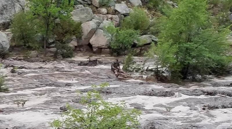 Внезапное наводнение в штате Аризона: стихия разбушевалась у города Пейсон - кадры