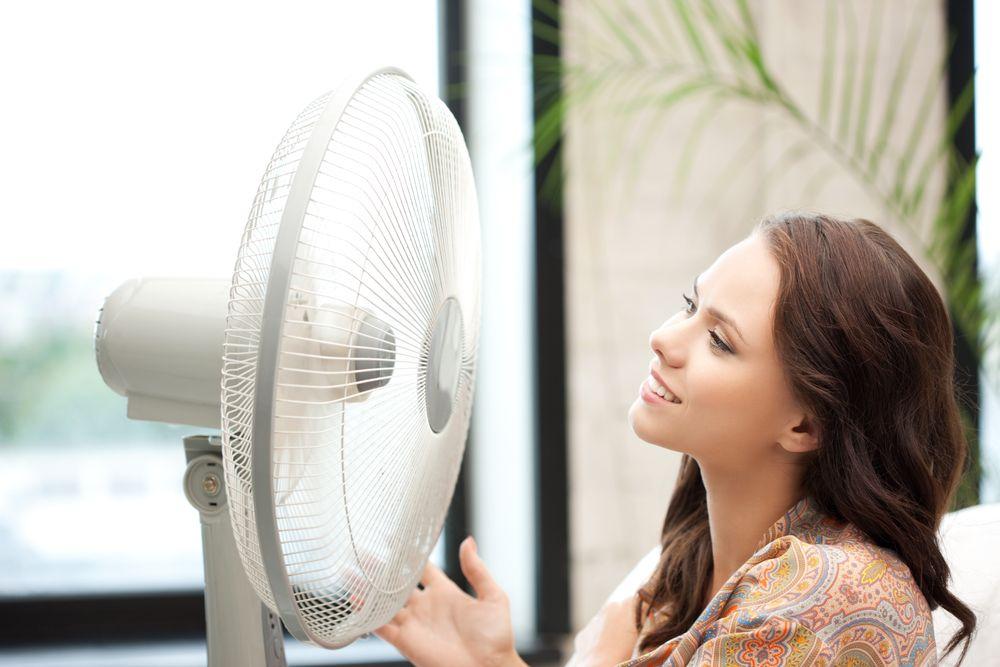 Дальний родственник Карлсона: выбираем вентилятор для дома