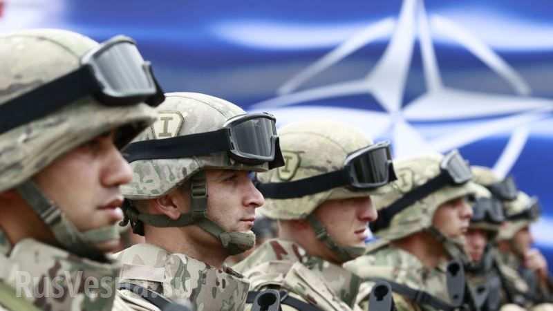 Батальоны НАТО в Европе в полной боеготовности: малейшая агрессия Путина обернется для России разрушительным ответным ударом - DW