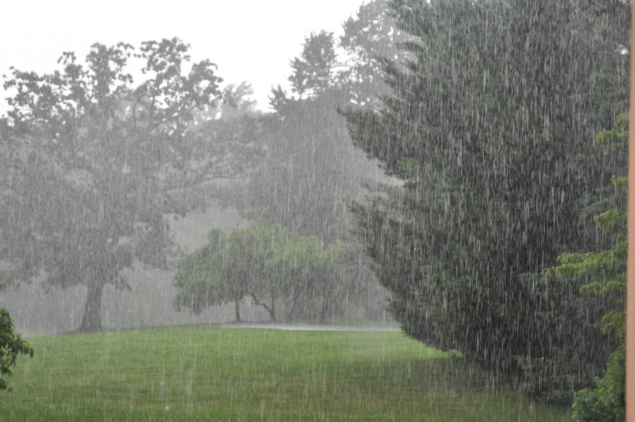Украина,  погода, прогноз, лето, температура, области