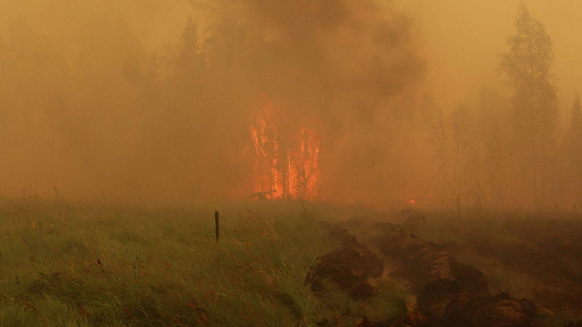 Лесной пожар подобрался к Якутску: в регионе нет денег на борьбу со стихией – власти ждут дождей