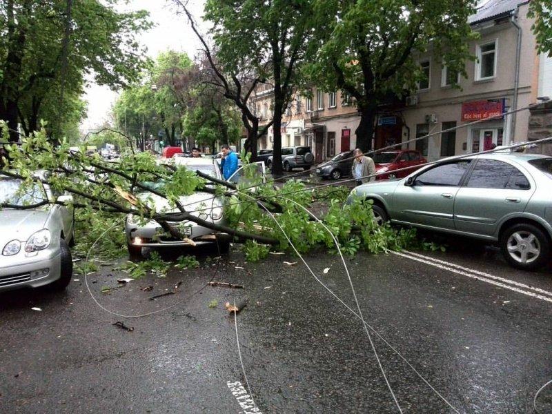 Непогода в Одессе: оборванные линии электропередачи, поломанные деревья и повышение грунтовых вод