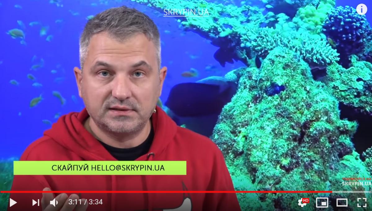 скрыпин, юлия Тимошенко, видео, украина, конфликт, ссора