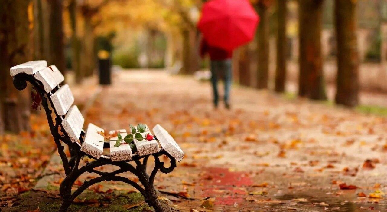 Это еще не бабье лето: синоптики дали прогноз на всю осень