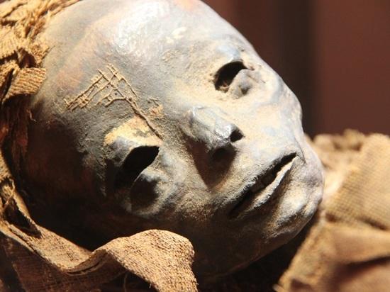 В Москве неожиданно нашли мумию женщины, оставившей полные загадок предсмертные записки