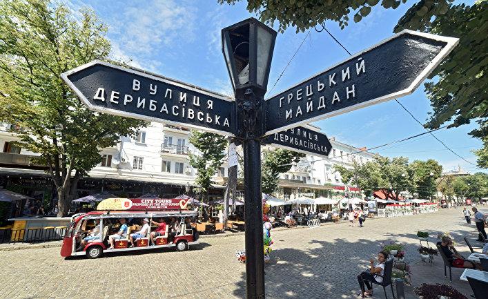 новости одессы, одесса сегодня, происшествия, змеи, новости украины