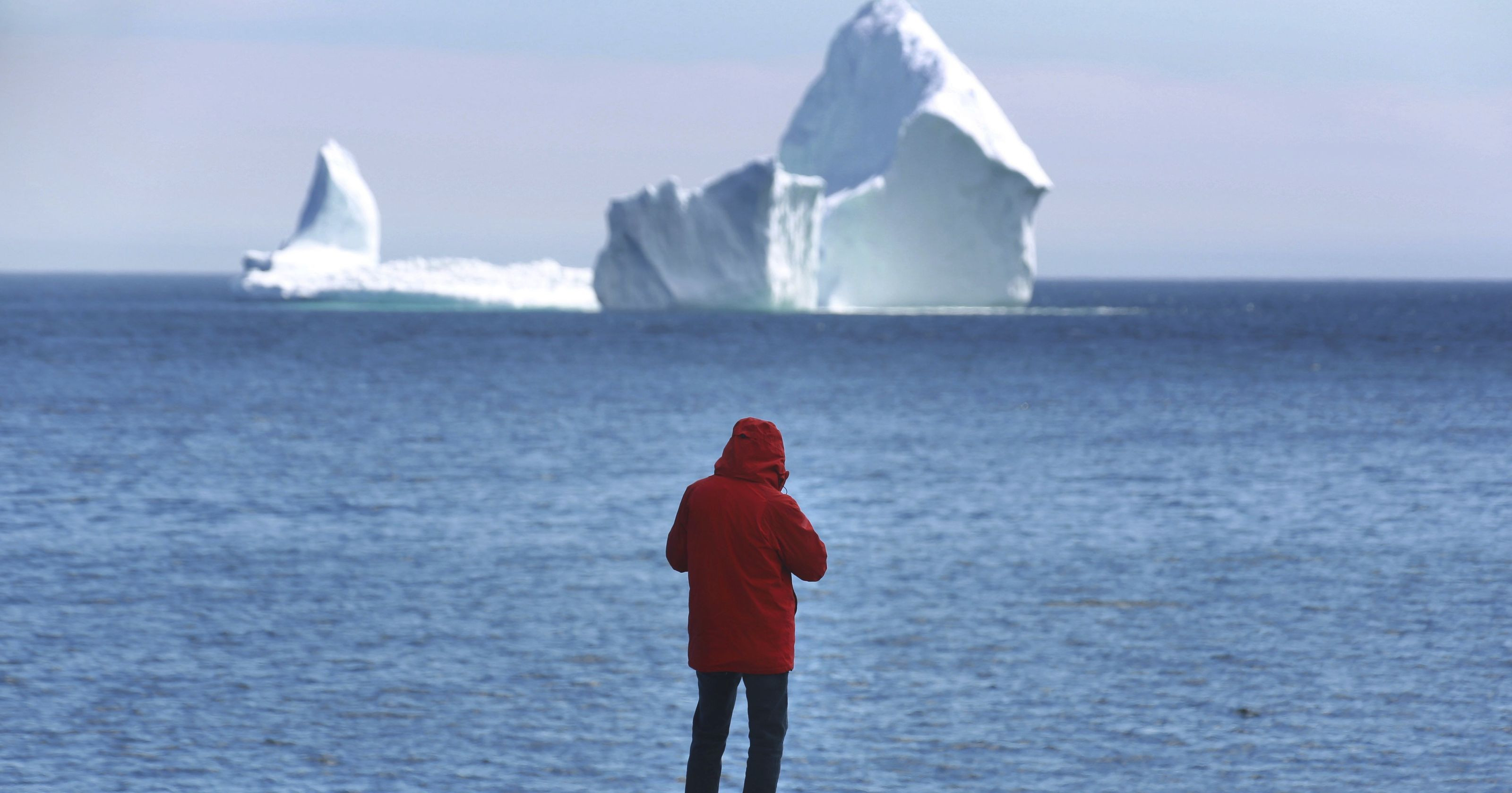 Гигантский айсберг А-68 весом 1 триллион тонн откололся от Антарктиды: ледник Ларсен-С стал еще меньше - удивительные кадры со спутника