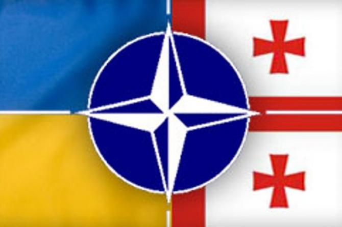 В Сенате США сказали, что мешает Украине и Грузии стать членами НАТО – кадры