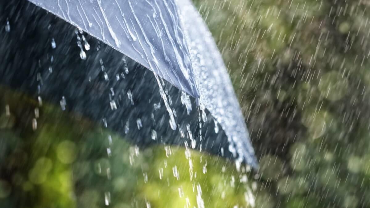 Резкое снижение температуры и дожди с грозами: синоптики дали прогноз на 19-21 июля