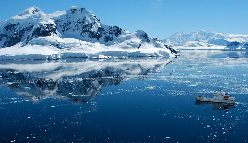 Антарктида, животные, ученые, морской монстр, вся правда, сенсация, находка, археологи, вся правда, подробности, Интернет, останки