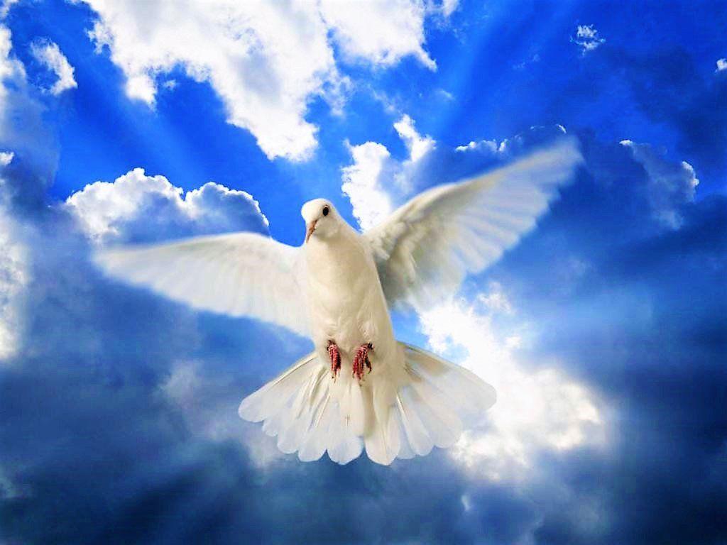 Как принято отмечать День Святого Духа, и что нельзя делать