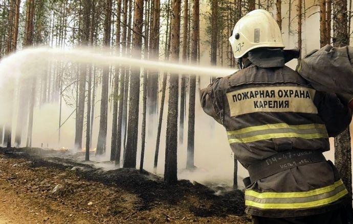Масштабные лесные пожары в Карелии: объявлен режим ЧС, уже сгорело более 1,5 млн гектаров