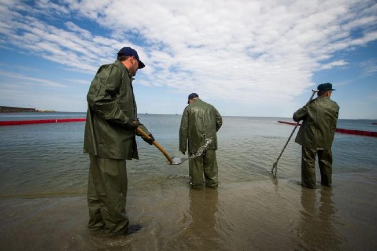 Новые подробности катастрофы на Камчатке: люди очень боятся, на берег залива вынесло тысячи погибших животных
