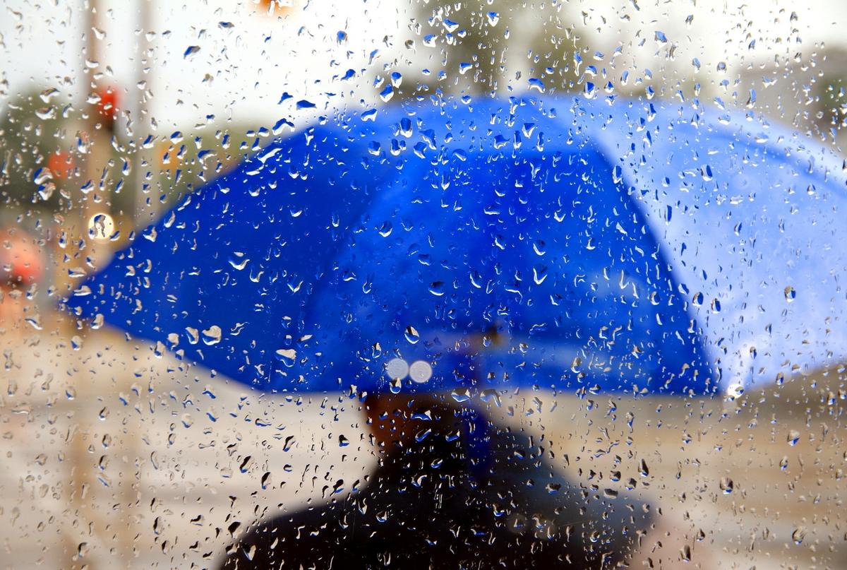 В Украине резко изменится погода: синоптики предупредили, в каких регионах похолодает и пройдут ливни в самые ближайшие дни