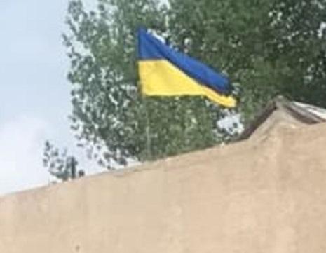 Теперь Золотое-4 с флагом Украины: первое эксклюзивное фото из освобожденного ВСУ поселка - кадры